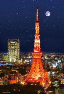 東京タワー(27)