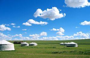 モンゴル(9)