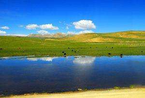 チベット(中国)