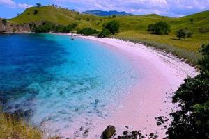 インドネシア3(コモド+レンバタ+スンバとスンバワ島)