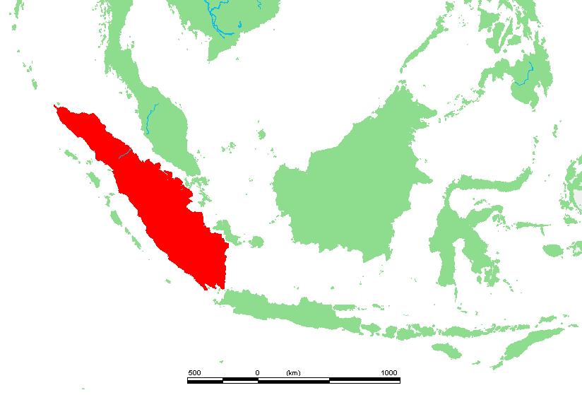 インドネシア4(スマトラ&カリマンタン島)